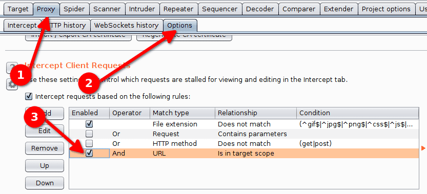 burp suite proxy options